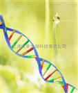 微量细胞核酸