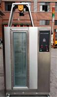IPX浸水试验箱武汉赛斯特厂家生产