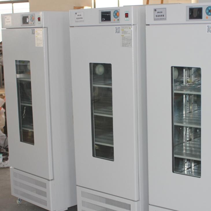 LRH-250F低温生化培养箱