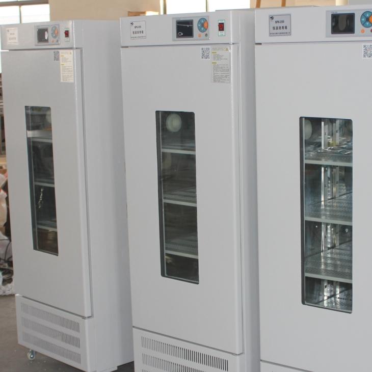 智能型低温霉菌培养箱