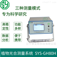 植物光合作用测量系统SYS-GH80H
