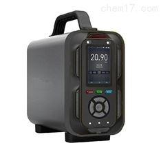 手提式高精度氮氧化物检测仪
