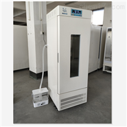 LRH-100-GSIE两面光照人工气候箱