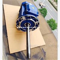 热风循环专用非标加长轴电机