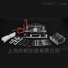 DYCP-31A型琼脂糖水平电泳仪(微型)