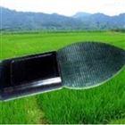 北京葉片表面水份儀