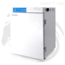 HWJ-3-270跃进二氧化碳培养箱
