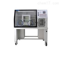 HYQX-III躍進厭氧培養箱