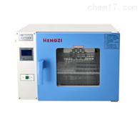 HGRF-9203跃进消毒箱/干燥箱