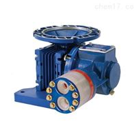 P100NMESS100A美国Hydra-Cell隔膜泵,Hydra-Cell计量泵