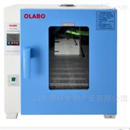 DHP-9088B电热恒温培养箱