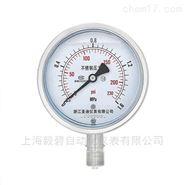 EB-YN-200Z耐震压力表