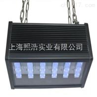 LUYOR-3124吊挂式LED冷光源紫外探伤灯