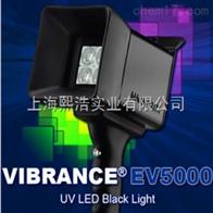 EV5000美国磁通LED紫外线探伤灯