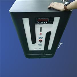 AYAN-30L2体氮气发生器