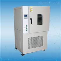 BG-400A热老化试验箱工厂