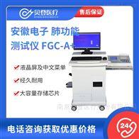 V278234安徽电子肺功能测试仪 FGCA+(带工作站)