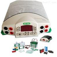 垂直3件套bio-rad 电泳仪电源含转印芯1658033电泳槽