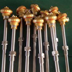 WZPK2-131双支铠装热电阻
