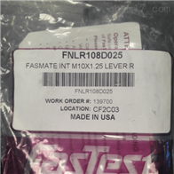 FNLR108D025美国FASTEST杠杆