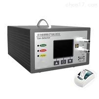 手提式气体检测仪