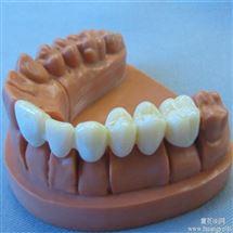 HY-E牙齒模型制作模具硅膠