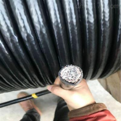 MKVVP2-22矿用控制电缆 结构图