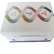 鸭瘟病毒(DPV)核酸检测试剂盒(荧光-PCR法)