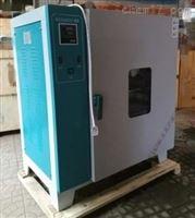 环保电热鼓风干燥箱101系列