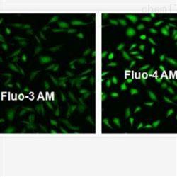 细胞钙离子检测实验