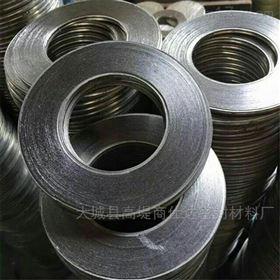 304不锈钢金属石墨密封垫片
