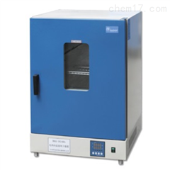 DGG-9070A立式电热鼓风干燥箱定做