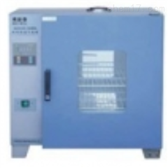 GZX-DH.202-1-BS供应电热恒温干燥箱