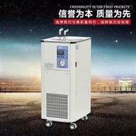DX-5000低温实验  低温循环浴槽