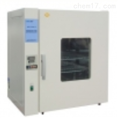 DHG-9243S-Ⅲ电热恒温鼓风干燥箱(200℃)