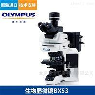 BX53奥林巴斯生物显微镜