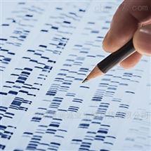 Direct-load 50 bp DNA Ladder