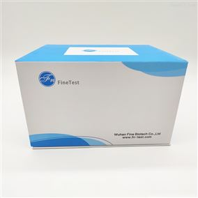 Human ADM(Adrenomedullin) ELISA试剂盒