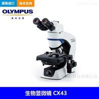 CX43奥林巴斯显微镜