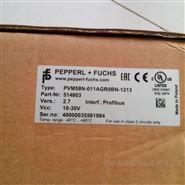 PVM58N-011AGR0BN-1213编码器现货P+F