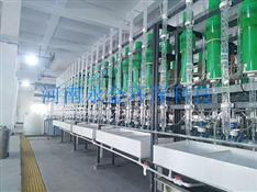 硫酸提纯设备SLST-DG