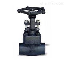 Z61Y閘閥Z61Y鍛鋼承插焊閘閥