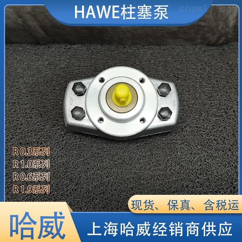 原装德国HAWE柱塞泵R0.3-0.3-0.3