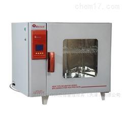 程控电热恒温培养箱