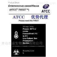 美国ATCC 700327铅黄肠球菌菌种