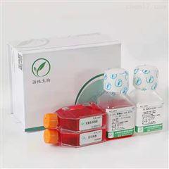 4T1   細胞4T1 (小鼠乳腺癌細胞) (STR鑒定正確))