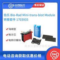 1703935伯乐 Bio-Rad 转膜套件
