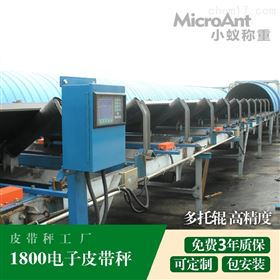 XY-ICS1800电子皮带秤