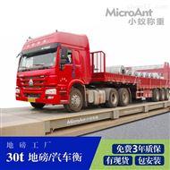 XY-SCS30全数字式汽车衡