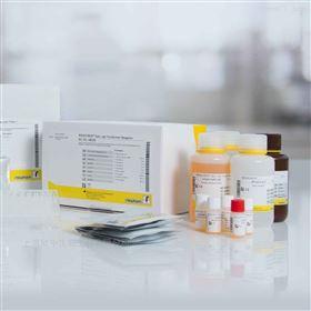 沙门氏菌属诊断血清 30瓶*1ml/套 细菌鉴定